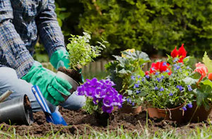 Gardening Services Batley West Yorkshire