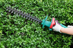 Gardening Services Tiptree Essex