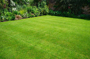 Lawn Care Carmarthen (01267)
